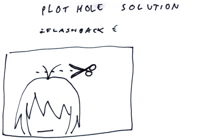 Plot Hole Solution